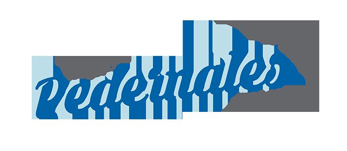 RADIO PEDERNALES-01